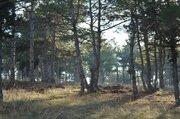 """Вилла """"Солнечный ветер"""" с бассейном, сосновый бор, Дома и коттеджи на сутки в Севастополе, ID объекта - 502036446 - Фото 23"""