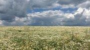 Земельные участки в Кунеево