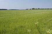Продается земельный участок площадью 5,3 Га, Промышленные земли в Твери, ID объекта - 202004374 - Фото 1