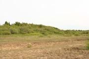 800 000 Руб., Первая линия Чудского озера, Земельные участки в Гдовском районе, ID объекта - 201271314 - Фото 4