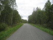 А54526: Киевское ш, 85 км от МКАД, садовое товарищество Ягодка, . - Фото 5