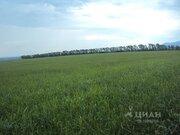 Продажа участка, Белокуриха, Ул. Чехова - Фото 1