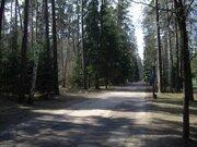 Продажа выгодно , лесного участка на Рублевке, д.Жуковка - Фото 1