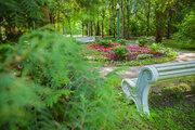 Квартира в лесу, Купить квартиру в новостройке от застройщика Усово, Одинцовский район, ID объекта - 319152236 - Фото 21