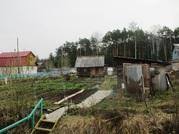 Продам дача ст глобус, Продажа домов и коттеджей в Екатеринбурге, ID объекта - 502580016 - Фото 7