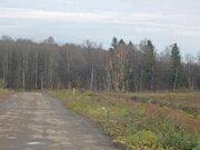 Продается участок, Можайское - Минское ш, 19 км от МКАД - Фото 2