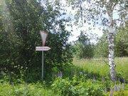 Земельный участок в д.Митино - Фото 3