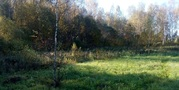 Продается хороший красивый участок 14.47 соток в кп Тишнево-2 - Фото 5