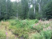 Идеальное место для любителей нетронутой природы Земельный участок - Фото 1