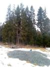 Продается 9 соток земли в п. Матросово - Фото 4