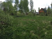 Лесной массив 27 Га с вековыми елями, соснами и березами в деревне - Фото 4