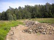Продажа участка, Васильево, Приозерский район - Фото 2