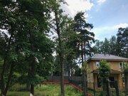 Участок 6 сот с вековыми соснами в Расторгуево с коммуникациями - Фото 1