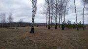 Продам земельные участки в д. Коржавино Муромского района - Фото 4
