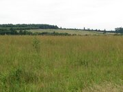 Участок земли по Рогачевскому шоссе 32 км от МКАД. - Фото 4