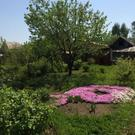 Садовый дом с зу, СНТ Сосновка-2 - Фото 4