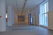 Аренда помещения под торговлю, 1347 м2, Первая линия пр. Энгельса. - Фото 4