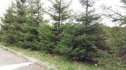 Продажа земельного участка по Пятницкому шоссе в д. Большаково - Фото 2