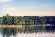 Зем.участок ИЖС (30 сот) в в Лен.области, Приозерского р-на, п.Цветково - Фото 1