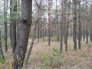 Предлагаю к продажи шикарный участок под коттеджный городок, Земельные участки в Украине, ID объекта - 201049347 - Фото 1