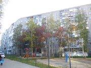 Квартира, ул. Софьи Перовской, д.113