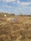 Участок в Калининском районе, д. Базилевка, Сад №33 СНТ Ромашка - Фото 5