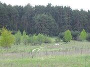 Продается земельный участок в с. Сосновка Озерского района - Фото 5