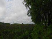 Участок 15 соток ИЖС 1 линия домов по ул.Березовая, п.Новоселки. - Фото 4