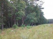 Продам 20 га в д. Покров, Жуковский район, 90 км от МКАД - Фото 4