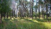 Участок 10 соток ДНТ в городском округе Переславль-Залесский