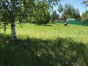 Участок на берегу р. Волга, д. Терехово - Фото 4