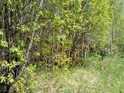 Опцион СНТ участок 24 соток Заокский район Тульская область - Фото 4