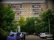 3-хкомнатная квартира Раменки