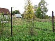 Продается земельный участок в д. Ледово Озерского района - Фото 1