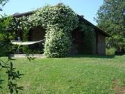 650 000 €, Вилла Тоди Код 182, Купить дом в Италии, ID объекта - 500206311 - Фото 8