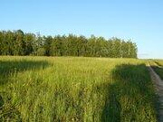 Деревня Митино участок 12,4 гектара Заокский район Тульская область - Фото 1