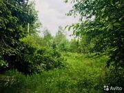 Купить земельный участок в Репино