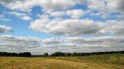 Продается земельный участок 50 соток в Петровском - Фото 5