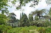Продается земельный участок в Алупке 300м от моря - Фото 3