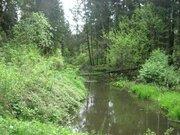 6 соток рядом с г.Лобня с\т Нефтехимик Дмитровское ш. 25 км.от МКАД - Фото 4