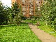 Продаётся 3-комнатная квартира по адресу Зеленодольская 36к1, Купить квартиру в Москве по недорогой цене, ID объекта - 316282761 - Фото 9