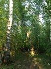 Земельный участок Барнаул, Центральный район с. Лебяжье - Фото 1