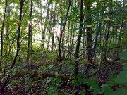 Участок в стародачном поселке Загорянский - Фото 3