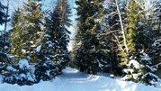 Ярославское ш. 27 км от МКАД, Зеленоградский, Коттедж 166 кв. м - Фото 3