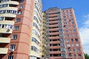 Студия с евро ремонтом., Купить квартиру в Электростали по недорогой цене, ID объекта - 324687779 - Фото 3