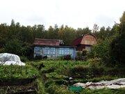 Предлагаем к продаже земельный участок 8,25 соток с домиком, Дачи в Красноярске, ID объекта - 502679239 - Фото 5