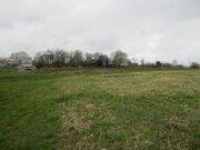 Земельный участок 30 соток в д. Большое Грызлово, Серпуховского р-она - Фото 4
