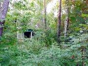 Участок в стародачном поселке Загорянский - Фото 2
