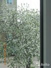 2 500 000 Руб., Продажа квартиры, Купить квартиру Ворошнево, Курский район по недорогой цене, ID объекта - 323380973 - Фото 9
