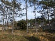 Участок 5 соток в Севастополе у соснового леса- мечта для жизни! - Фото 4